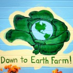 Down to Earth Farm