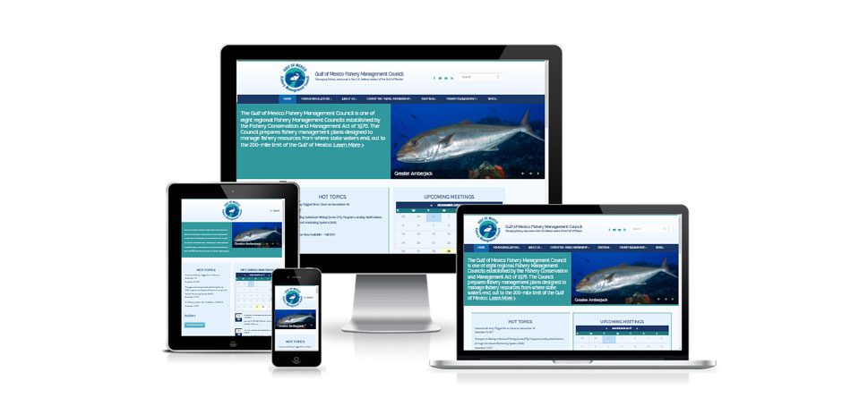 Responsive web design for Gulf Council